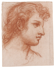 Galerie Nathalie Motter Masselink Italian School <i>Study of the Head of a Young Man</i>