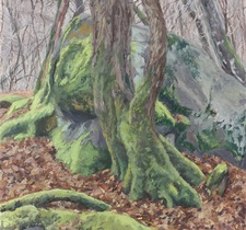 Galerie Nathalie Motter Masselink Reid Masselink <i>Tree and Mossy Rock in Winter</i>