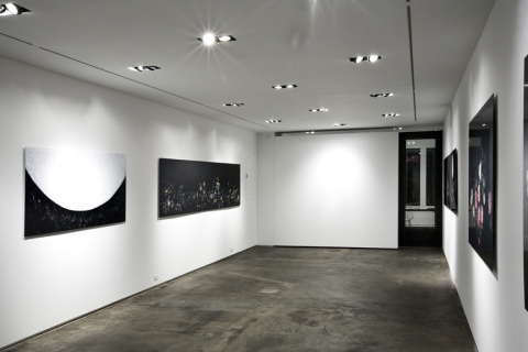 Nancy Friedemann-Sánchez COLLETTE BLANCHARD GALLERY 2009