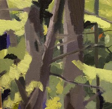 Nancy McCarthy TREE PAINTINGS oil on canvas