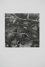 Nancy McTague-Stock  Solar Etchings, Monotypes Drypoint