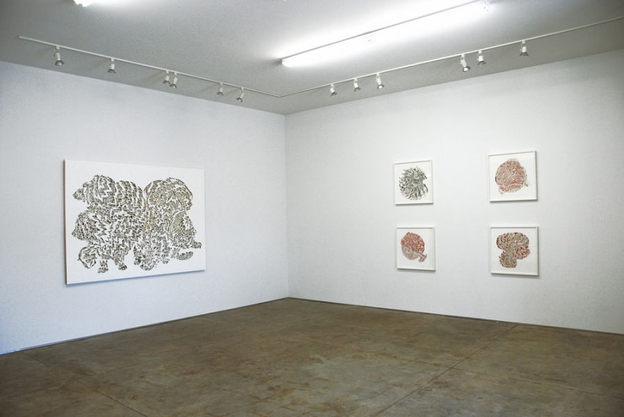 Implausible Tiger Implausible Tiger, Installation view at Bryan Miller Gallery, Houston, TX