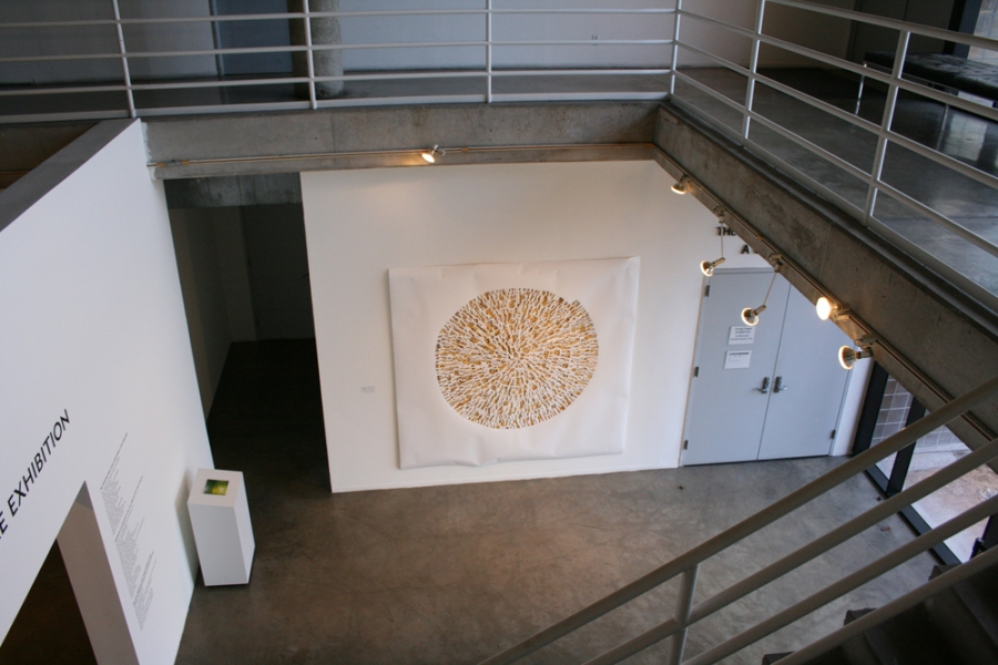 Selected Works Dormouse, Installation view