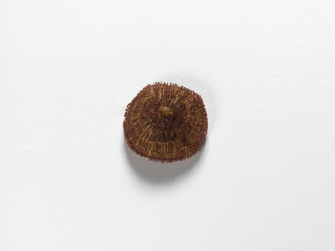Nicola Ginzel  OBJECT  installations Lemon, embroidered with thread by hand