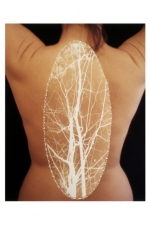 Nicola Woods Illuminated photographs exploring light and the body 2005-2008 Punctured backlit film