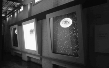 Nicola Woods Large scale illuminated photographs on display at Gallery 44 Toronto, 2003 Backlit transparencies installed in vitrine cases