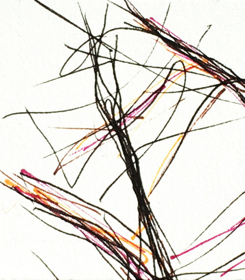 Timed Responses. (Branches). 2015. Ink on Paper