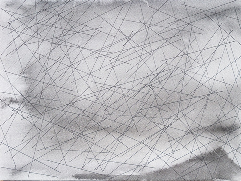 Time Lines (Fields) 8 Months. 2016. Ink on paper
