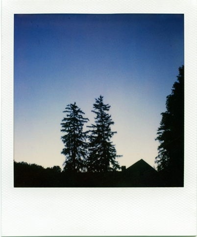 Individual Polaroids A Twilight .004