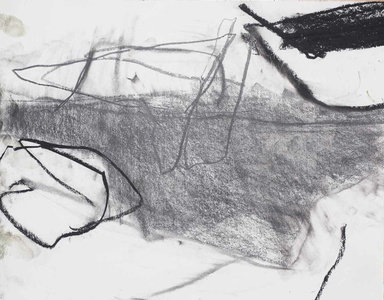 Pam Cardwell Drawing - 2012 - 2014 graphite, charcoal on paper