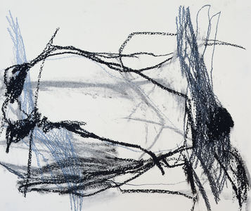 Pam Cardwell Drawing - 2015 graphite, oil pastel on paper
