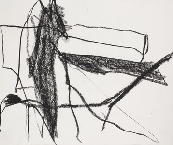 Pam Cardwell Drawing - 2012 - 2014 charcoal on paper