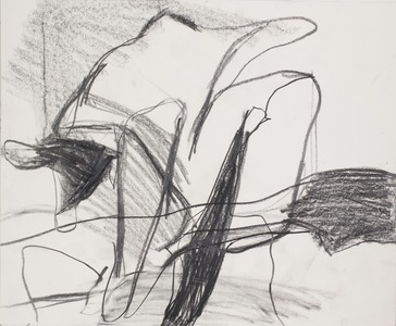 Pam Cardwell Drawing - 2012 - 2014 graphite on paper