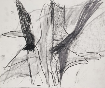 Pam Cardwell Drawing - 2012 - 2014 graphite, oil pastel on paper