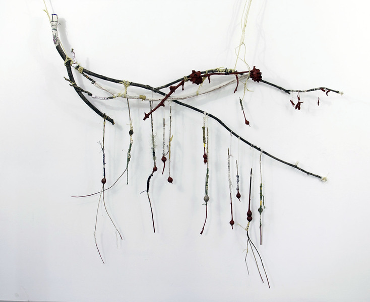 Sculpture/Installation Goldenrod Galls