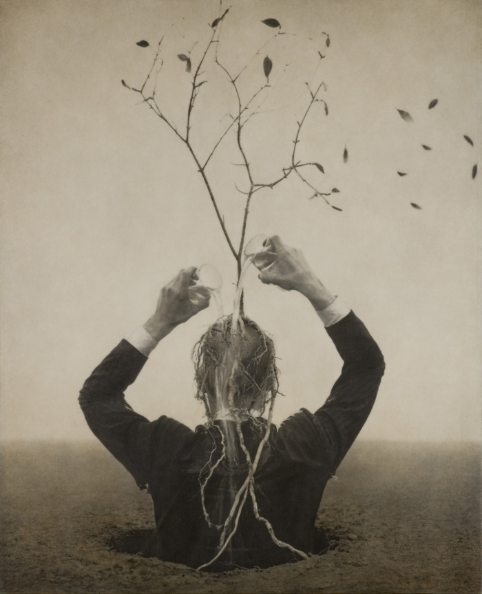Robert and Shana ParkeHarrison Burn Season