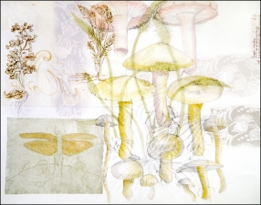 Pat Cresson + Recent Fine Art Work > Intaglio Prints Intaglio, digital image, drypoint and colored pencil
