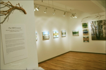 Pat Cresson + Exhibition Gallery Photographs 2000-2018 digital imaging and prints