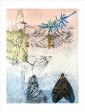 PAT CRESSON + Recent  Work > Movable Monoprints oil monotype with etching, stencil and chine colle´