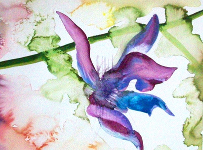 Patricia Rockwood Works on Paper: Archive Watercolor