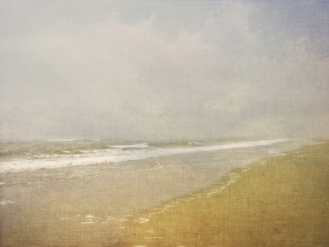 Peggy Braun Chincoteague photography