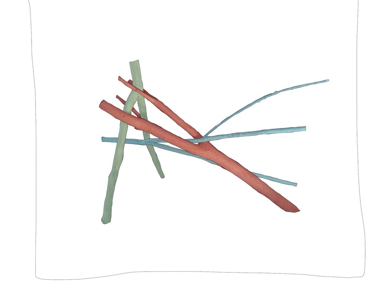 Drawing ideas for sculpture Colored branches 1