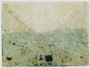 Priscilla Derven Prints monoprint, water based ink and oil stick on paper