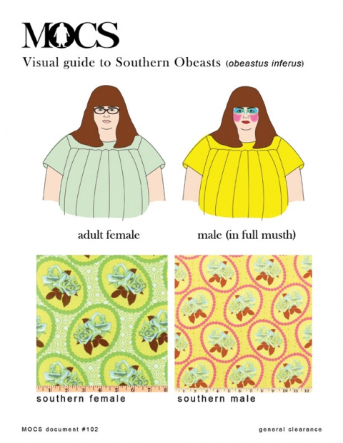 MOCS drawings + design Visual Guide to Southern Obeasts