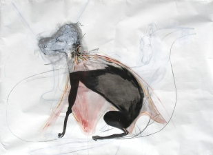 Rachel Phillips Drawings Acrylic and Charcoal on Paper