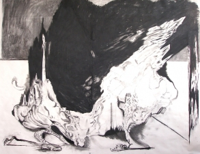 Rachel Phillips Drawings Charcoal on Paper