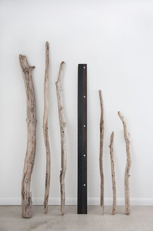 Regan Stacey Still Life wood and steel