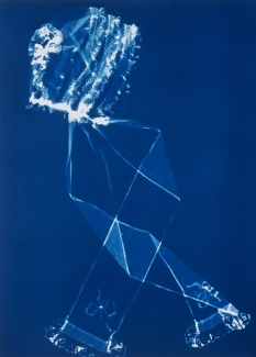 Regan Stacey Jane cyanotype photogram