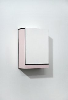 Richard Roth Paintings  2006 - 2011 Flashe on Birch plyood