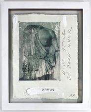 ROBERT PETERSEN 2012-2013 Photo transfer, acrylic, and graphite on paper