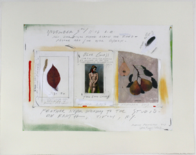 ROBERT PETERSEN 2012-2013 Photo transfer, postcard, leaf, powdered pigment, acrylic, graphite and tape on paper