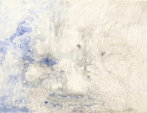 Robyn Ellenbogen Metalpoint Drawings 2011-2012 Silverpoint and Watercolor on Panel