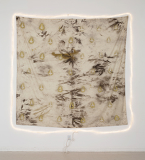 RYAN SARTIN Paintings Acrylic, soil, chalk dust, on cotton fabric with rope light