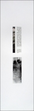 Roy Baugher Estuary Cut-and-pasted printed paper on paper, 15 sheets, sheet 2 of 15