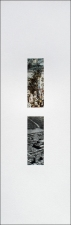 Roy Baugher Estuary Cut-and-pasted printed paper on paper, 15 sheets, sheet 6 of 15