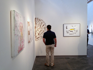 radius250 2013 Biennial Juried Regional Exhibition