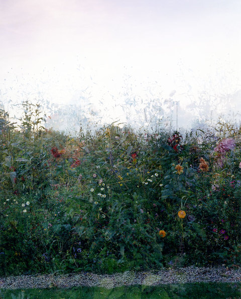 SALLY APFELBAUM  GIVERNY RECENT, PHOTOGRAPHS Archival Pigment Print