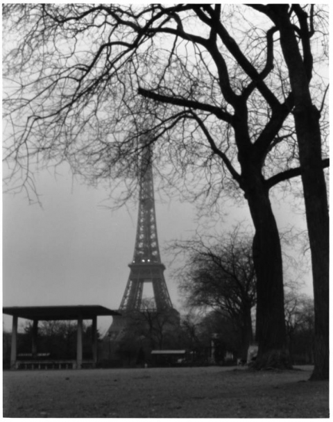 Photography Eiffel at Dawn