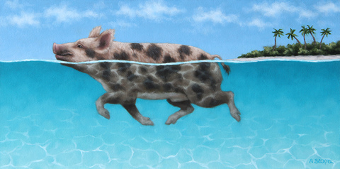 Sarah Becktel  Swimming Pigs Oil on Canvas Covered Panel