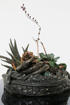Sarah Bedford Bronze + Clay  Clay and plants