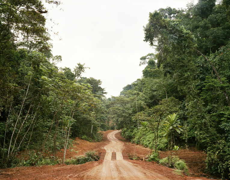 <b>Republic of Dust</b> Logging road with bridge