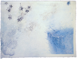 Sean Naftel  Cyanotype, dry pigment, charcoal, chalk on paper<br/>