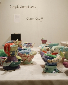 "Shana Salaff ""Simple Sumptuous"" (2009 MFA thesis show) Porcelain"
