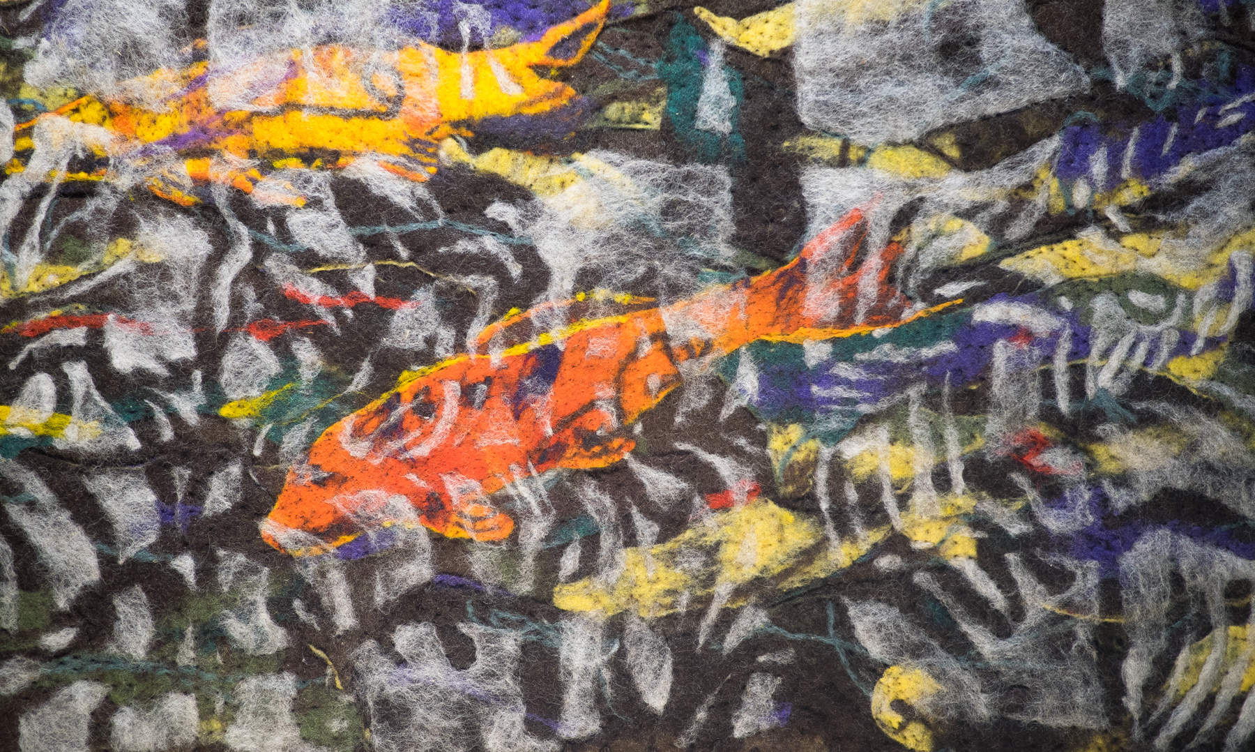 2015 Beneath the Long Grass: The Constructed Canvas Reflected Koi - detail, Land in CloseUp Series