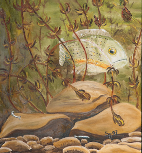 Sharon Hogg 2009 Just The Land Oil on Canvas