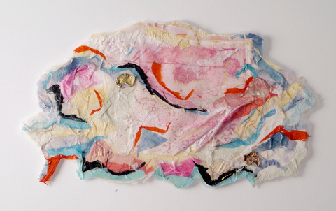 Sheila McInerney  Natural Phenomena collage on paper